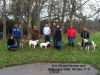 04Dec11 Pack Walk