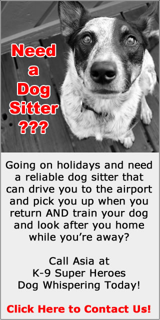 Dog Whispering Pet Services